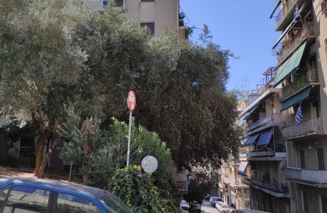 דירות למכירה באתונה |  Patriarchou Ieremiou 32-36, Gkizi